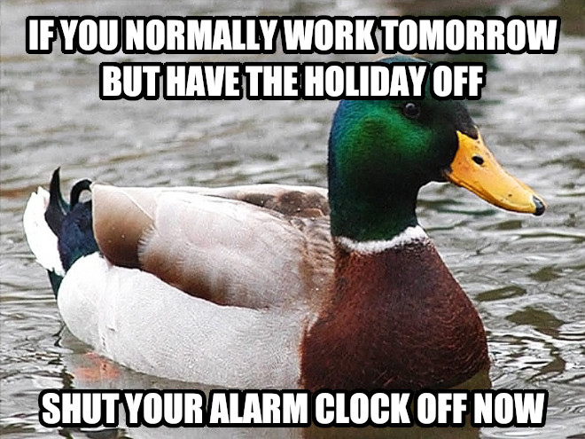 File:Actual Advice Mallard meme 4.jpg