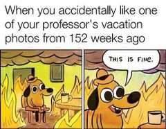 This Is Fine meme #2