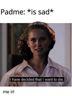 I Have Decided That I Want to Die meme #2