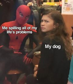 Spider-Man Explaining to Zendaya meme #3