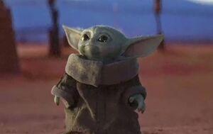 Baby Yoda Meming Wiki