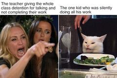 Woman Pointing At Cat meme #1