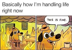 This Is Fine meme #1