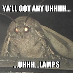 Moth Lamp meme #1