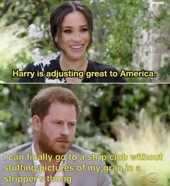 Harry Is Adjusting Great to America meme #1