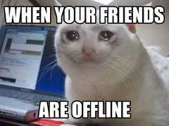 Crying Cat meme #3