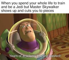 Years of Academy Training Wasted meme #3
